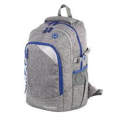 Рюкзак TIGER FAMILY (ТАЙГЕР), с ортопедической спинкой, молодежный, серый, 43х33х23 см